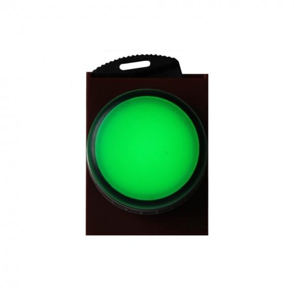 C2LIF G 220V Индикаторная лампа зеленая